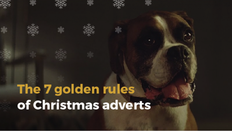 Buster the boxer, john lewis christmas advert