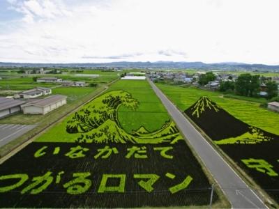 Wave Crop Art